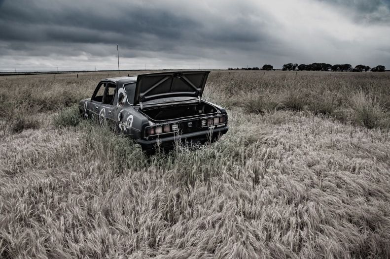 Photograph of a black car with the boot open, in a field of brown grass
